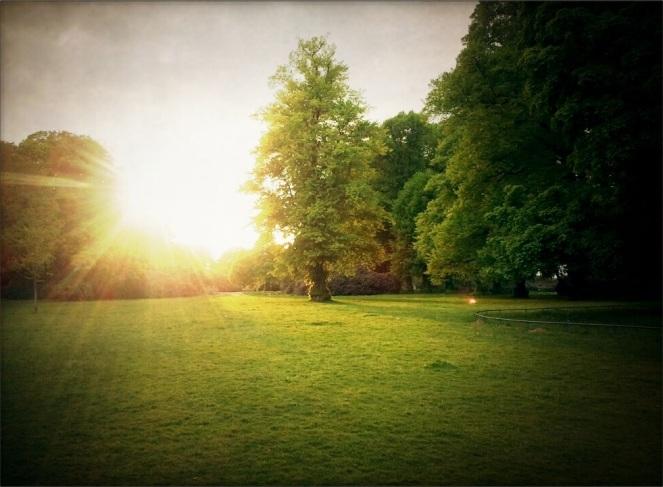 Sun in Hamburg