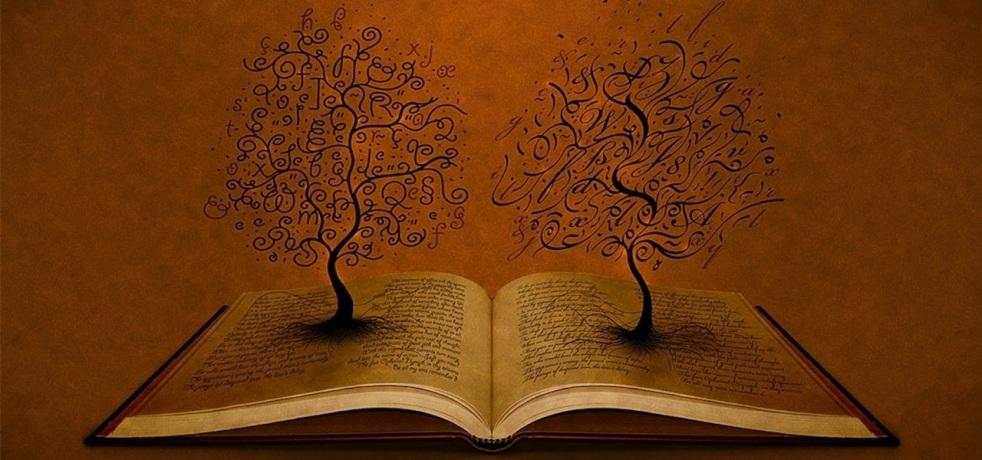 Environment Bookshelf