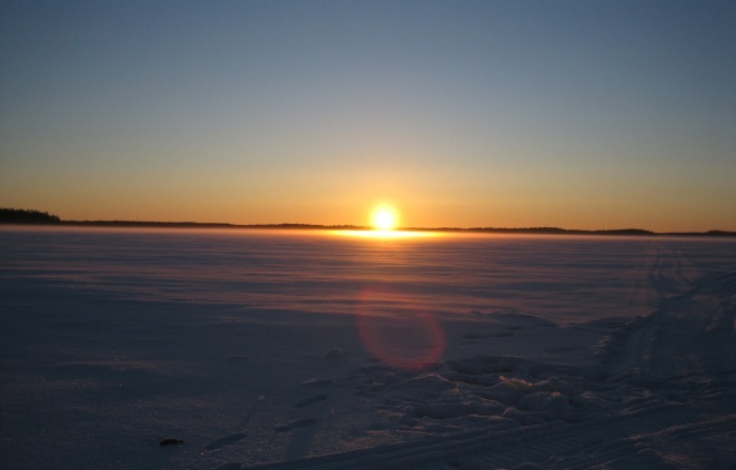 Polar Dawn