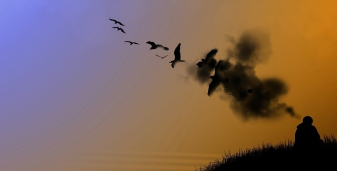 Thinking Birds Header