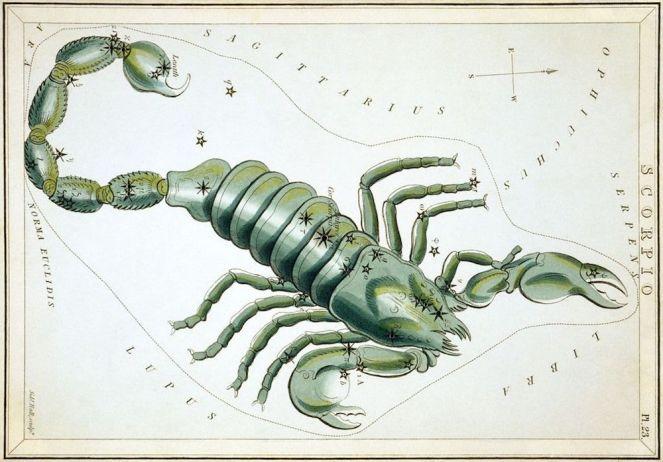 Zodiac Myths: The Story Behind Scorpio – Jessica Davidson